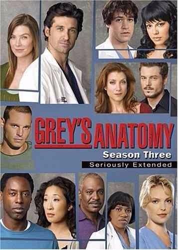 grey's anatomy - temporada 3 - seriously extended