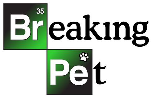 grooming a domicilio peluquería canina y felina breakingpet