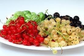 grosellas uva espina congeladas i q f - 1 kg