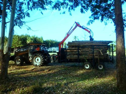 grúa forestal autocargable - carreta forestal 10tn con grúa
