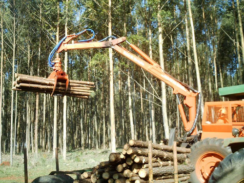 grúa forestal bertotto 4.57 (ex 650) con montaje en tractor