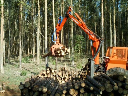 grúa forestal para leña (para montar en camión o tractor)