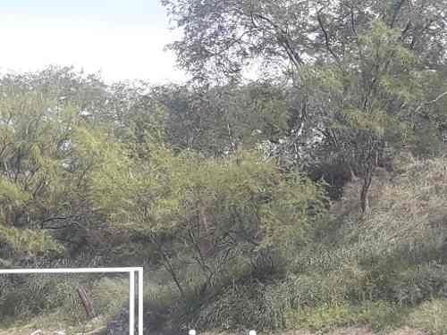 guadalupe, n.l. arboledas de san miguel