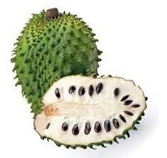guanabana guanabanos fruta pulpa