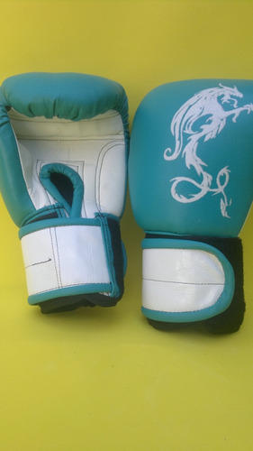 guantes de box, muay thai. kick boxing