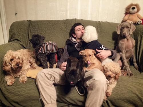 guardería canina  zona sur  en libertad sin caniles