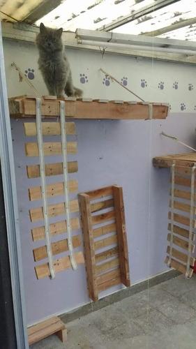 guarderia felina!!! como en casa!