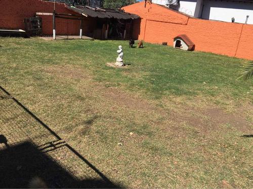 guardería y pensión canina campo chico