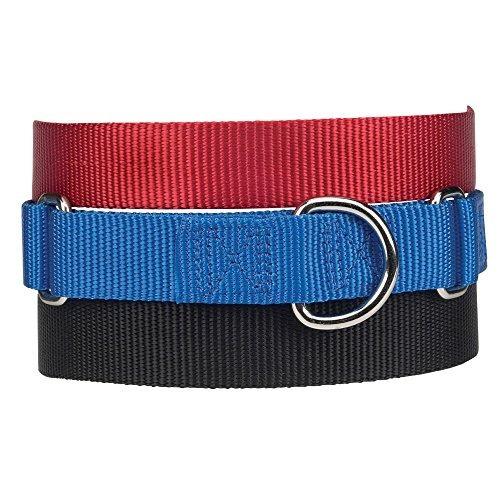 guardian gear collar de perro de nylon martingale, se adapt