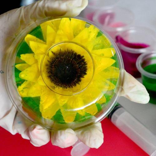 gubias para gelatinas florales en 3d - kit 1