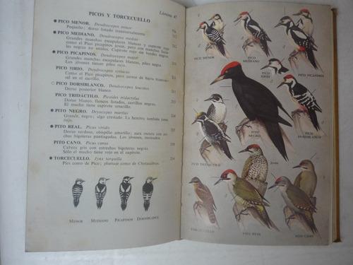 guía de campo de las aves de españa y demás países de europa