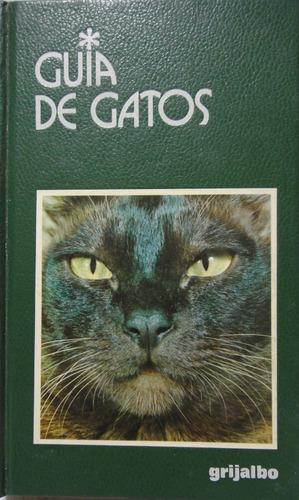 guia de gatos gino pugnetti retira microcentro/retiro