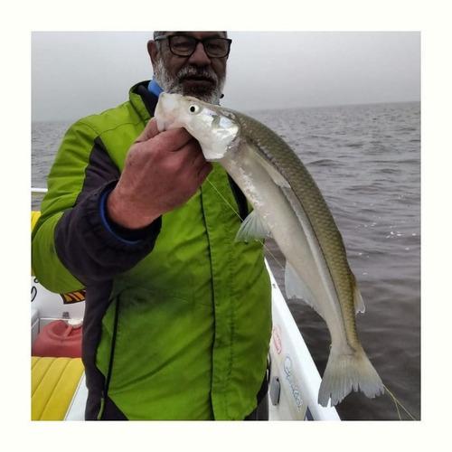 guia de pesca río de la plata