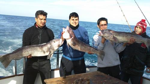 guía pesca embarcado mar del plata en yates deportivo
