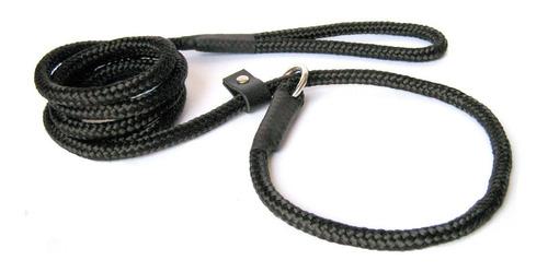 guia unificada 10mm coleira adestramento cachorro exposição