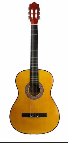 guitarra acústica segovia