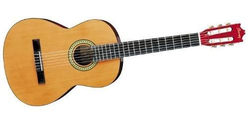 guitarra clasica ibanez nat.