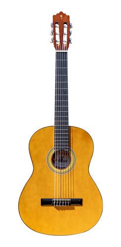guitarra clásica palmer pc13 color natural con funda