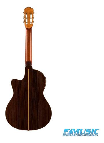 guitarra criolla clasica microfono gracia wilde pro acustica