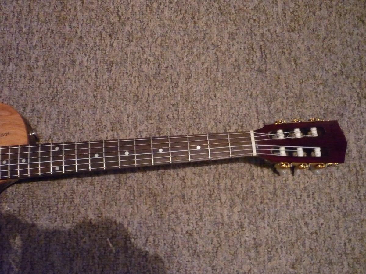 Guitarra de luthier espectacular en for Guitarras de luthier