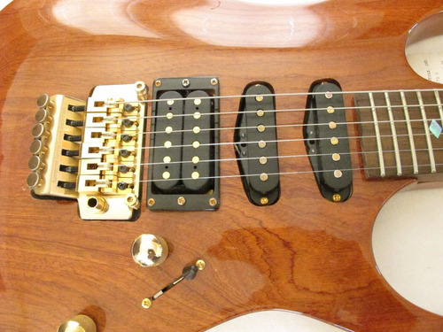 guitarra electrica eleca maquinaria floyd rse tono gold