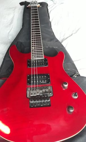 guitarra electrica samic con floyd rouses