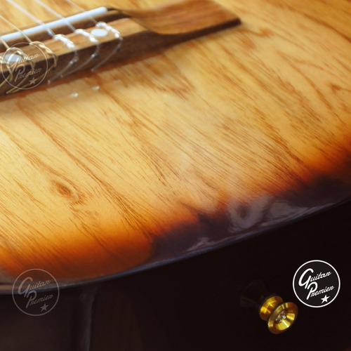 guitarra electrocriolla corte eq afinador ampli laney funda