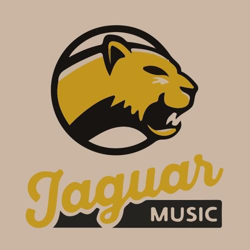 guitarra jackson rhoads js32 black / white bevels