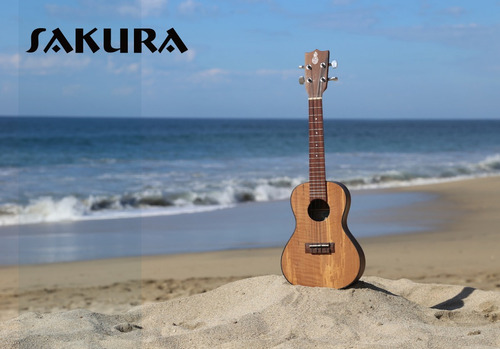 guitarra sakura varios modelos con calidad y el mejor precio