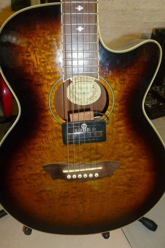 guitarra washburn electroacústica rebajada