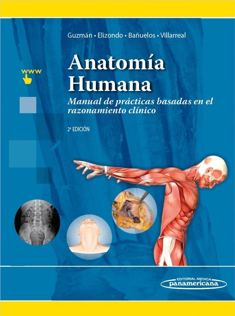 Bonito La Práctica Libre De Laboratorio De Anatomía Ideas - Imágenes ...