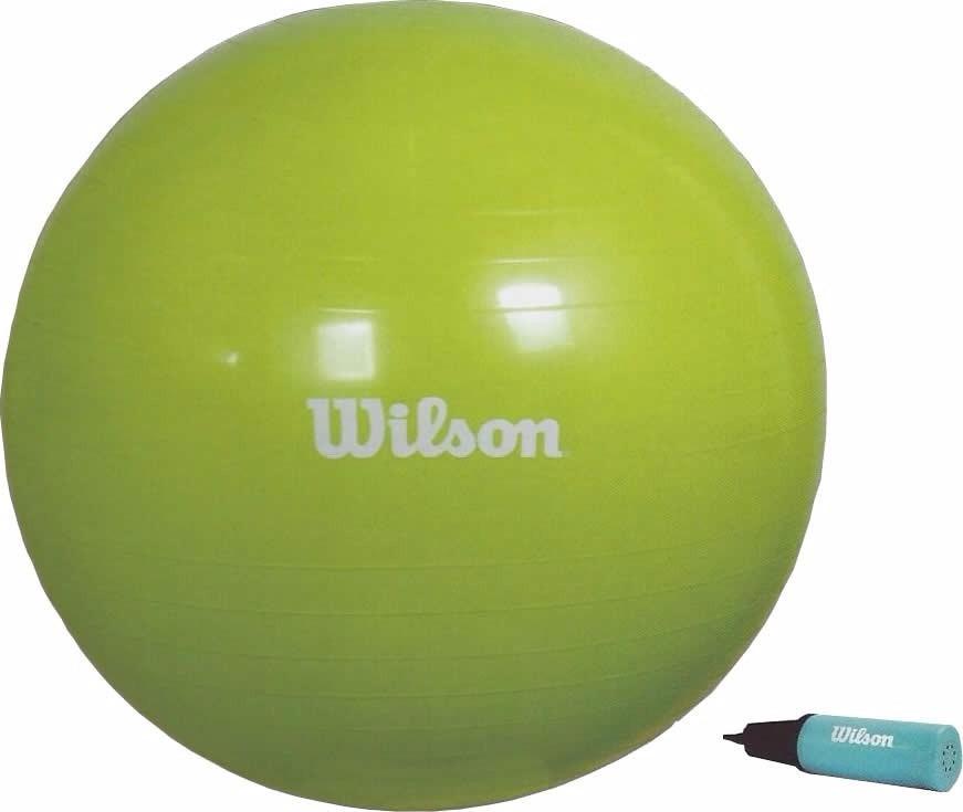 Gym Ball Pelota Pilates cd6f50c74d14
