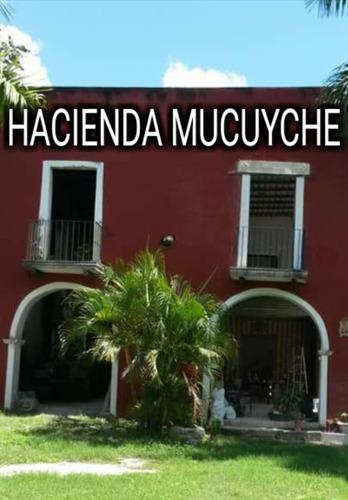 hacienda mucuyche a 13 km. de izamal de 221 has.