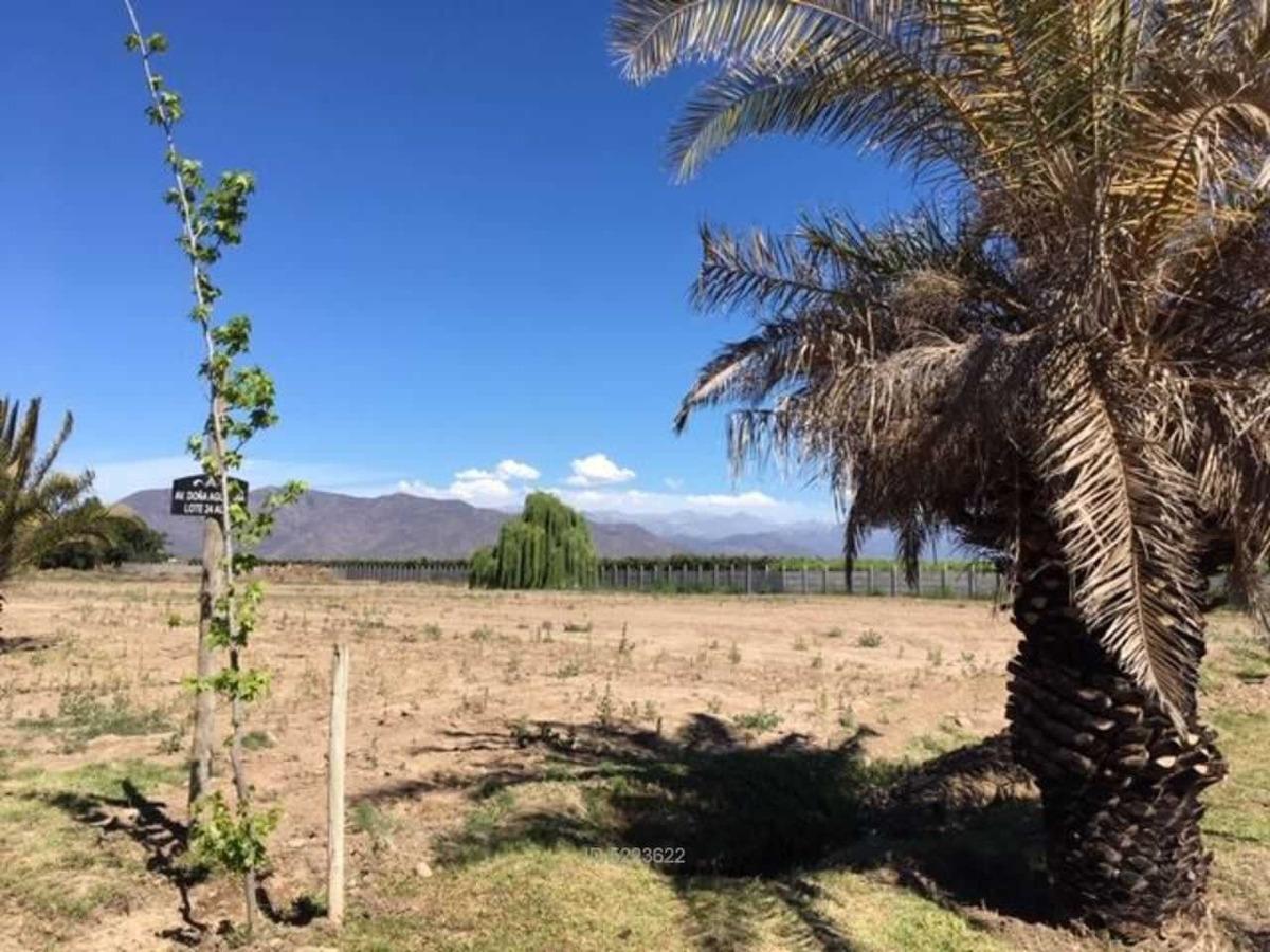 hacienda olivar