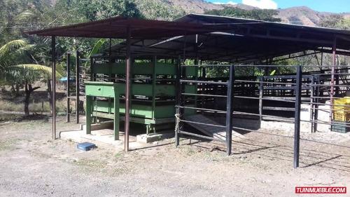 haciendas - fincas en venta en s j de los morros 04265330810