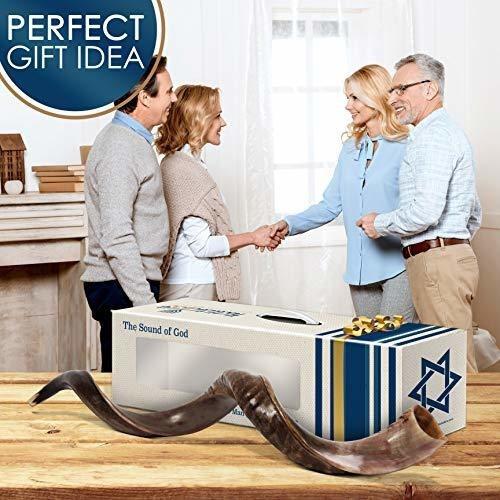 halleluyah shofar set  half polished 28 -32  kudu horn ko