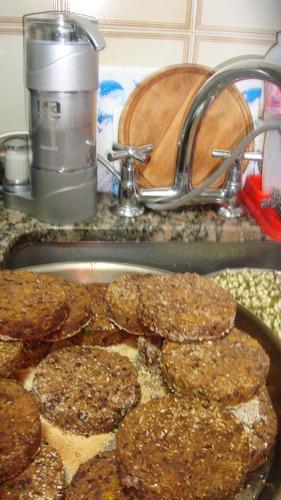 hamburguesas y empanadas vegetarianas/veganas
