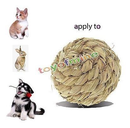 hamster ratones gerbo conejo atractivo ejercer juguete de ju