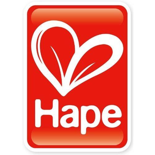 Hape - Happy Family Doll House - Muebles - Sala De Prensa ...