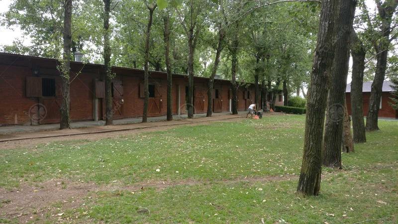 haras ,58 has con excelentes instalaciones e inmejorable acceso