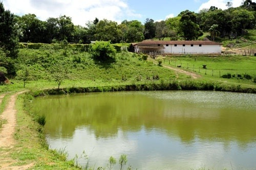 haras a venda estado de sao paulo cidade piedade ( 4132 )