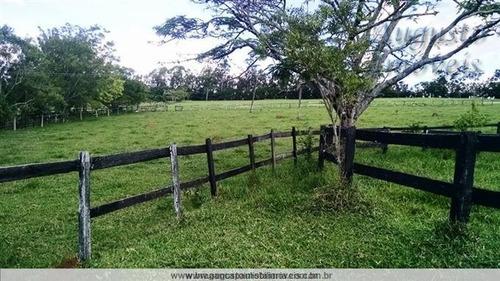 haras ou fazenda bragança paulista. 24 alqueires.