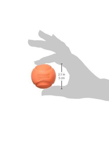 ¡hardware canino chuckit fetch ball