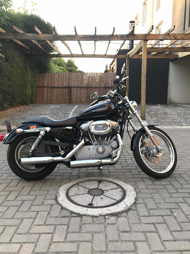 harley-davidson custom 883