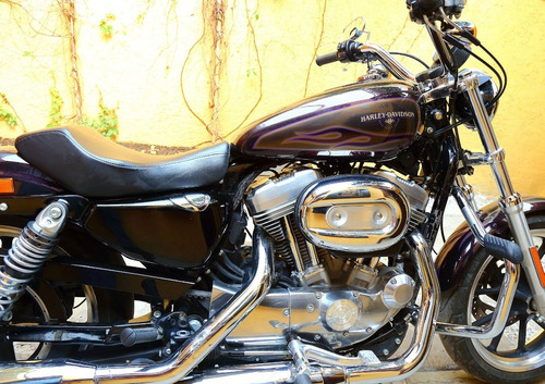 harley davidson super low 883 hard candy custom
