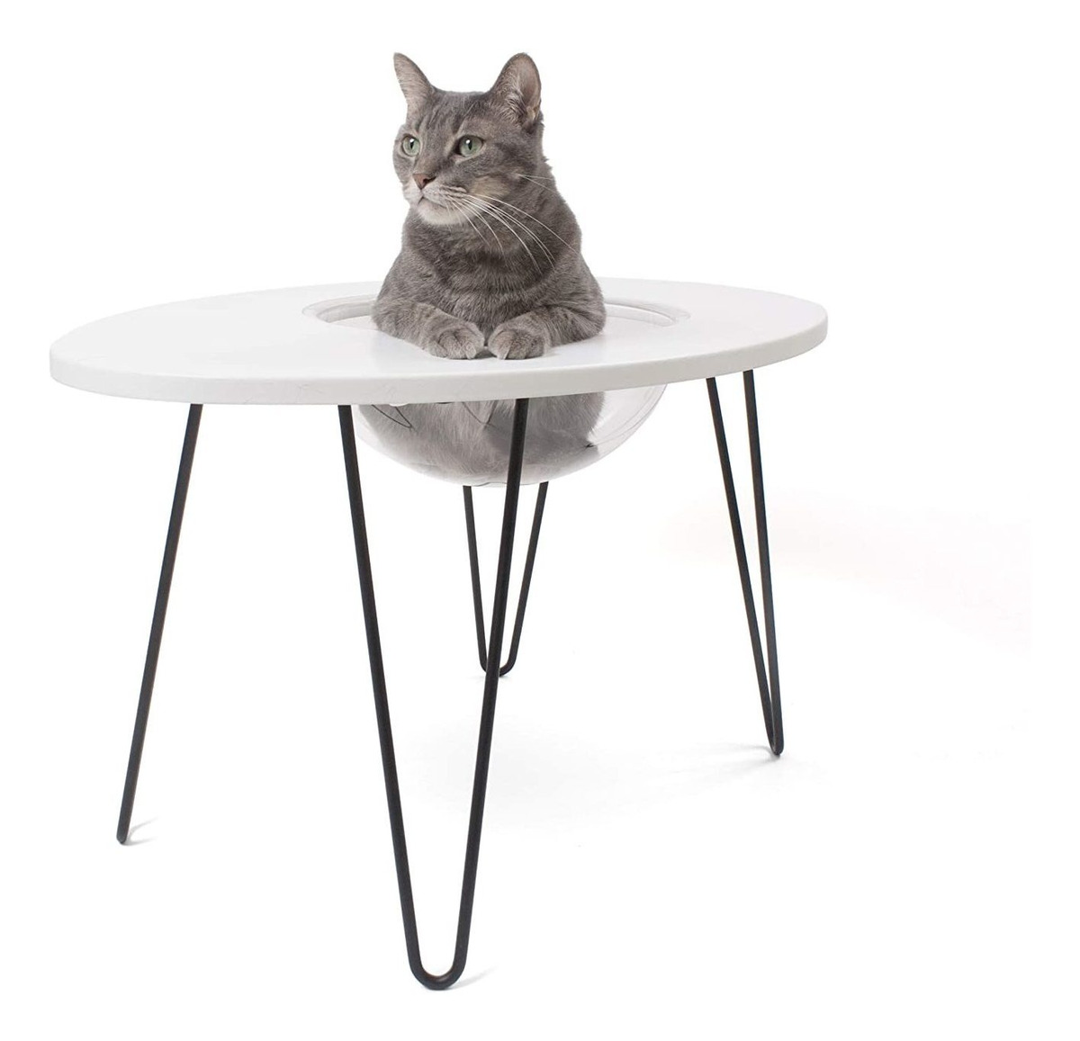 Picture of: Hauspanther Nestegg Raised Cat Bed Side Table 875 900 En Mercado Libre