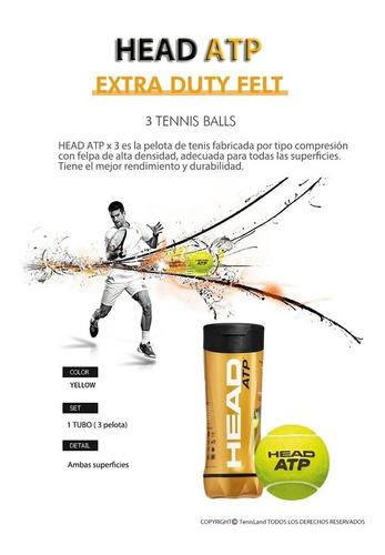 head atp x3 pelotas tenis padel x 6 tubos loc. no.1 arg