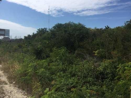 hectarea ubicada a 15 min de tulum