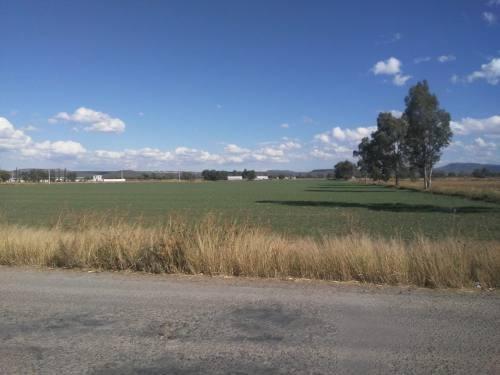 hectáreas en colón, querétaro, viborillas