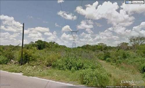 hectáreas en venta en yucatan, al sur de la ciudad.  molas, con lineas de cfe